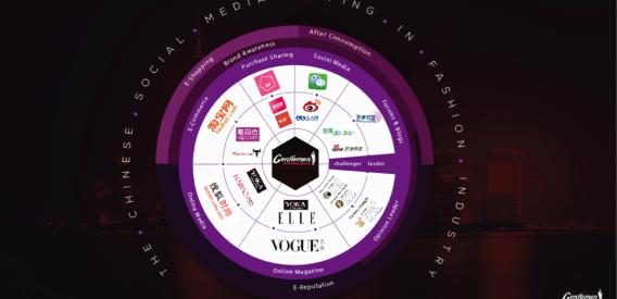 Social medias landscape